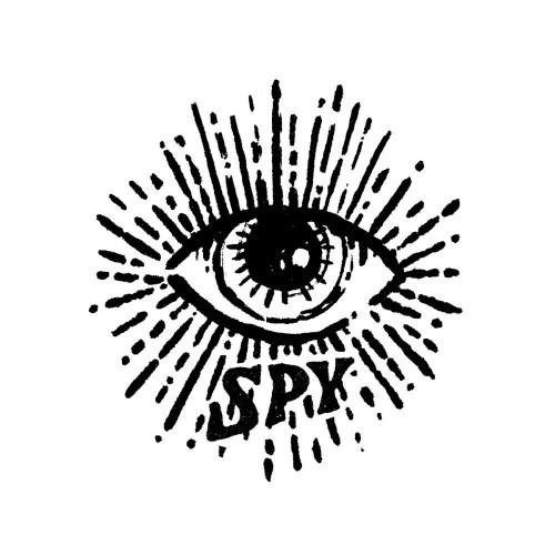 Eye Spy - Diligentia Group